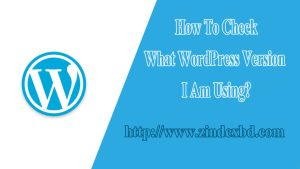 How-To-Check-What-WordPress-Version-I-Am-Using