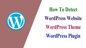 How-To-Detect-WordPress-Website-Wordpress-Theme-WordPress-Plugin