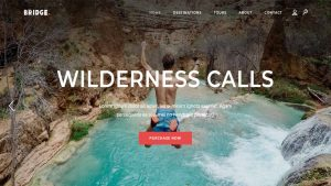 How to Create Travel Agency Website