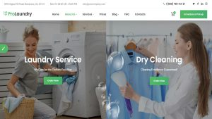 Clearning Service WordPress Themes